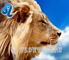 Как привлечь мужчину льва
